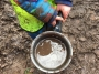 Woodland Play March 2017